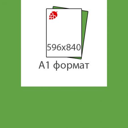 Печать формата А1 (596х841)